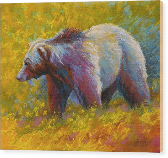 The Wandering One - Grizzly Bear Wood Print