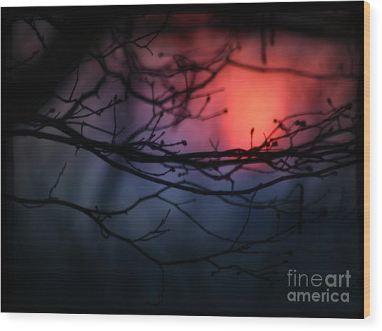 The Warm Light Wood Print by Angel Ciesniarska