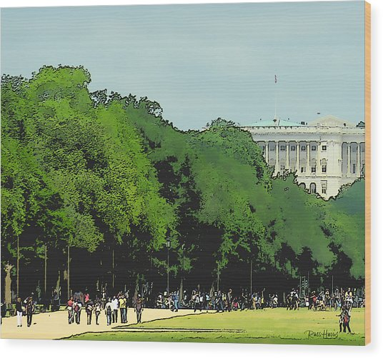 The Washington Dc Mall Wood Print
