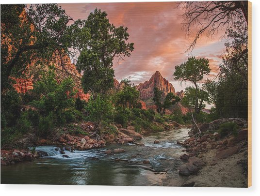 The Watchman Sunset Zion National Park Wood Print