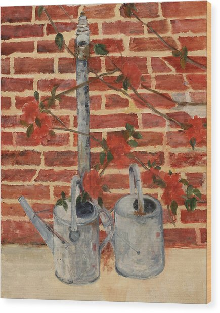 The Watering Cans Wood Print by Betty Stevens