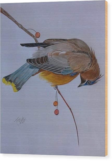 The Waxwing  Wood Print