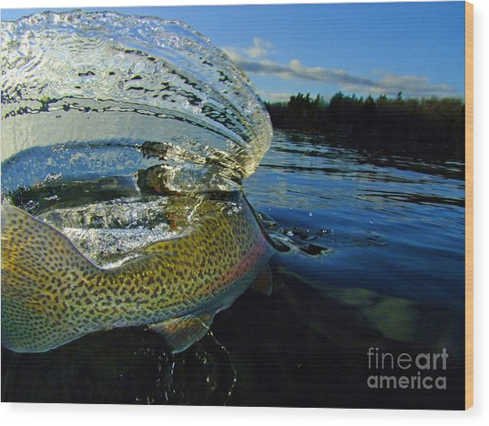 The Way Of The Trout Wood Print by Brian Pelkey