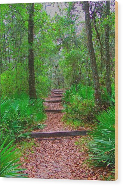 The Way Up Wood Print by Judy  Waller