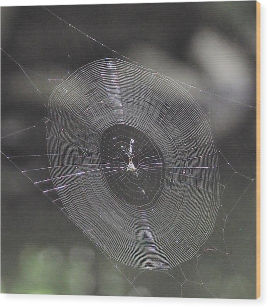 The Web Wood Print