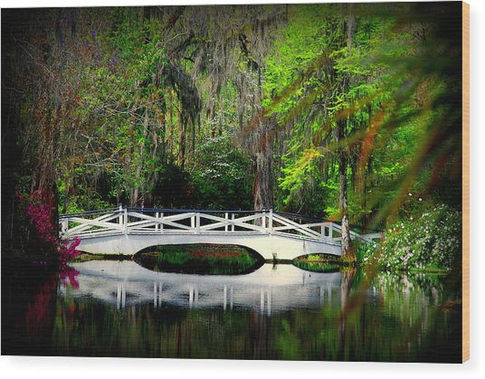 The White Bridge In Magnolia Gardens Sc Wood Print
