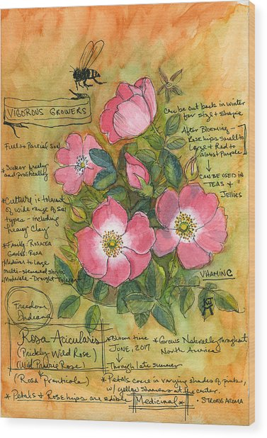 The Wild Rose Wood Print