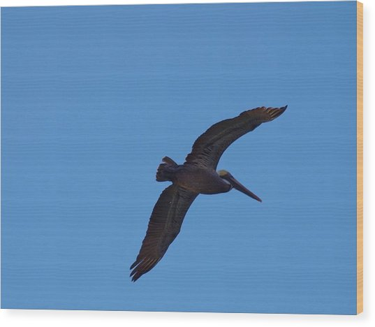The Wind Beneath My Wings Wood Print