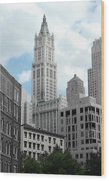 The Woolworth Building - Nyc Wood Print