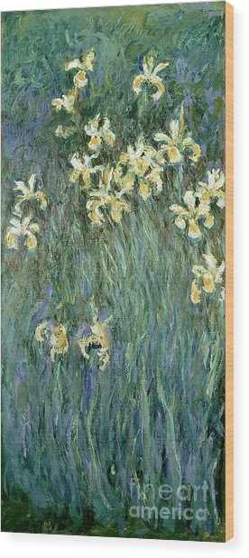 The Yellow Irises Wood Print
