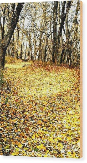 The Yellow Leaf Road Wood Print