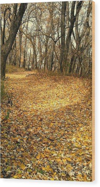 The Yellow Leaf Road- Version II  Wood Print