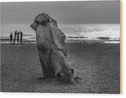 The Youth And The Horsehead Wood Print