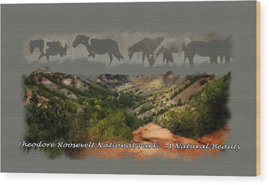 Theodore Roosevelt National Park Wood Print