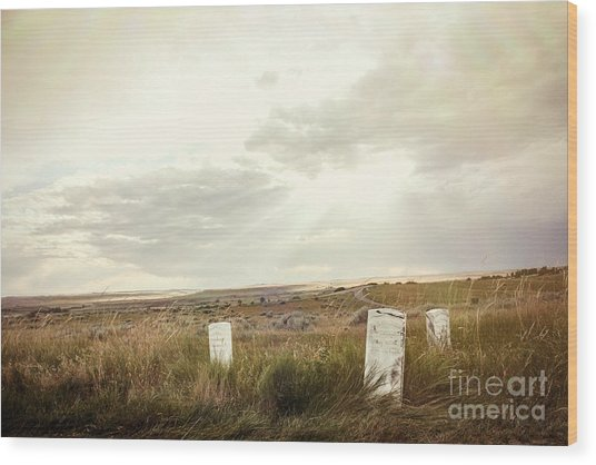 They Stand Alone Wood Print by Sandy Adams