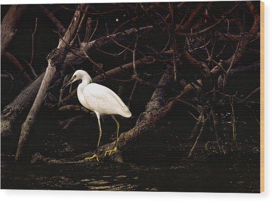 Thicket Wood Print by Joel P Black