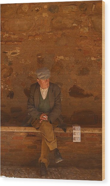 Thinking Of The Lotto Wood Print by Jez C Self
