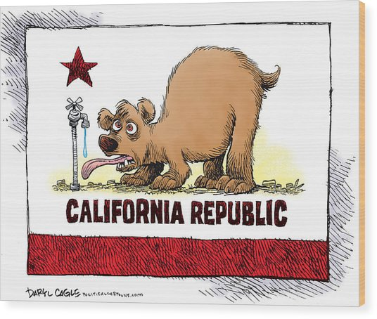 Thirsty California Flag Wood Print