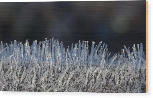 This Is Frost Wood Print