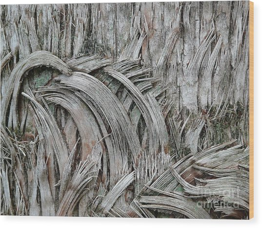 This Way 'n That Wood Print by Donna McLarty