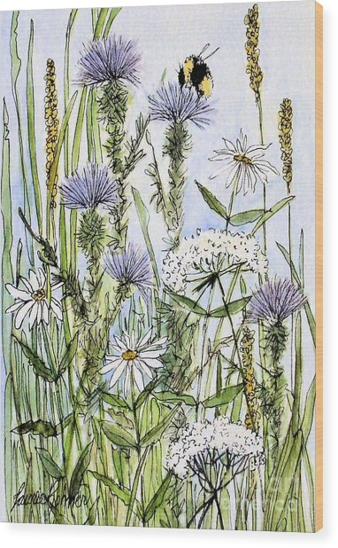 Thistles Daisies And Wildflowers Wood Print