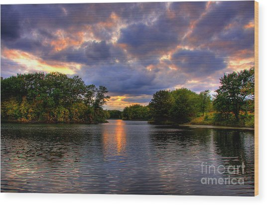 Thomas Lake Park In Eagan On A Glorious Summer Evening Wood Print