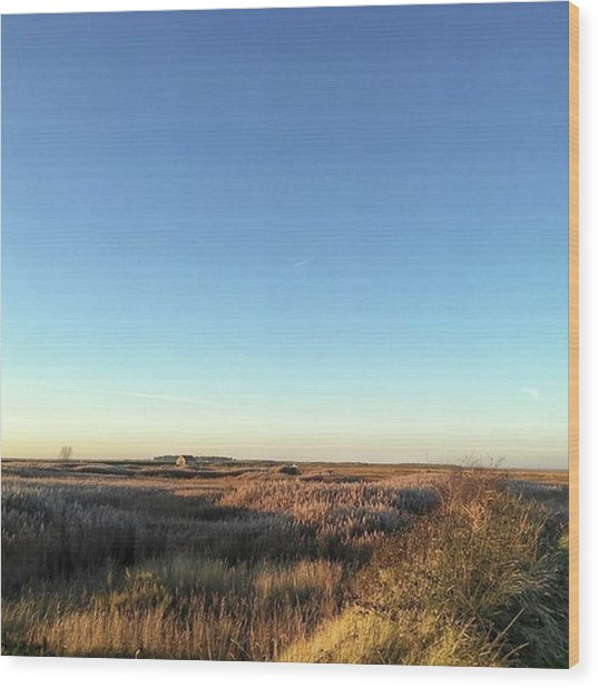 Thornham Marsh Lit By The Setting Sun Wood Print