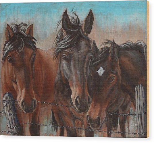Three Curious Friends Wood Print