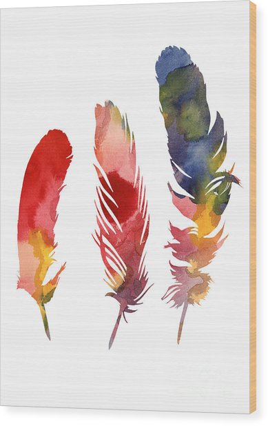 Three Feather Watercolor Poster Wood Print