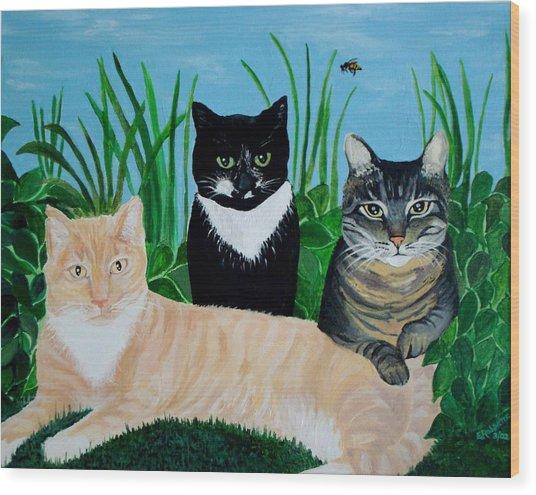 Three Furry Friends Wood Print