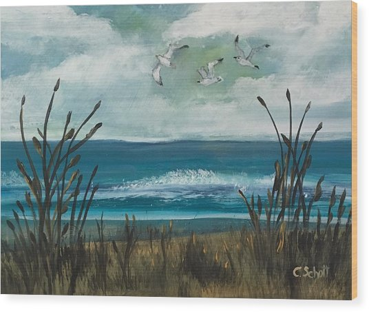 Three Gulls Wood Print