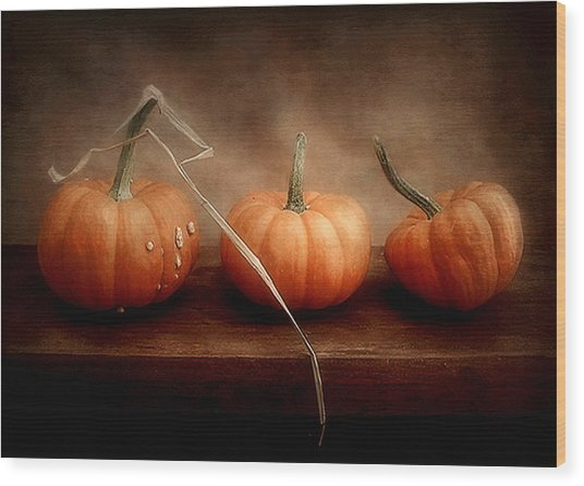 Three Little Pumpkins Wood Print