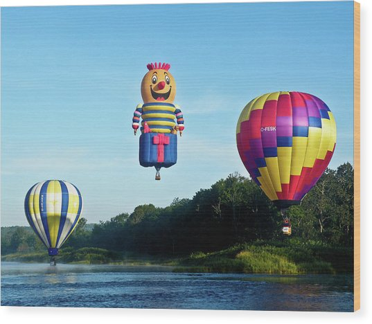 Three Of A Kind Wood Print by Ragina Kakos