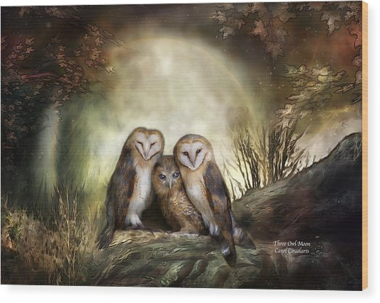 Three Owl Moon Wood Print