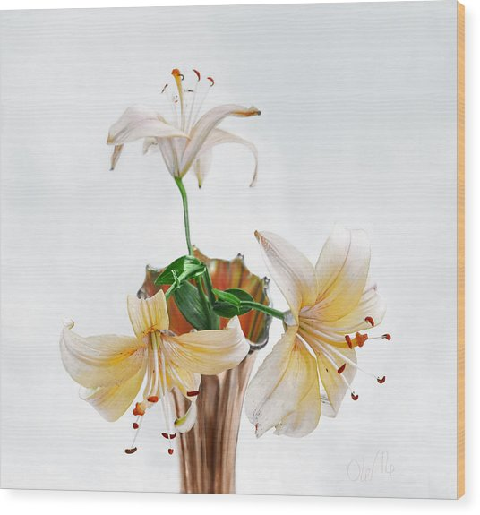 Three Pale Gold Lilies Still Life Wood Print