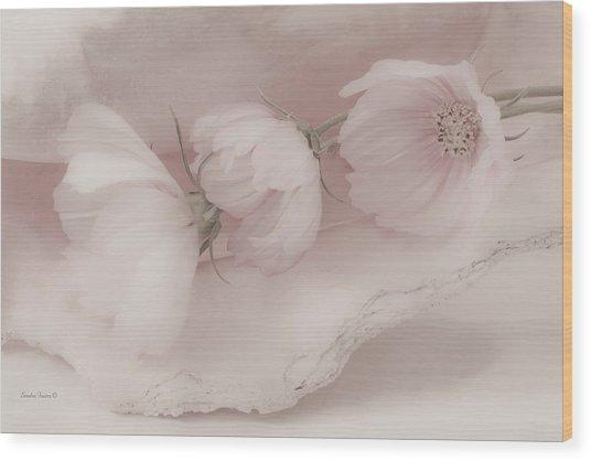 Three Pink Cosmo Flowers Wood Print