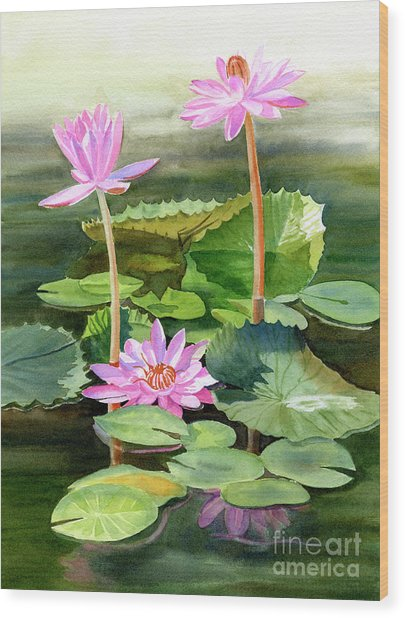 Three Pink Water Lilies With Pads Wood Print
