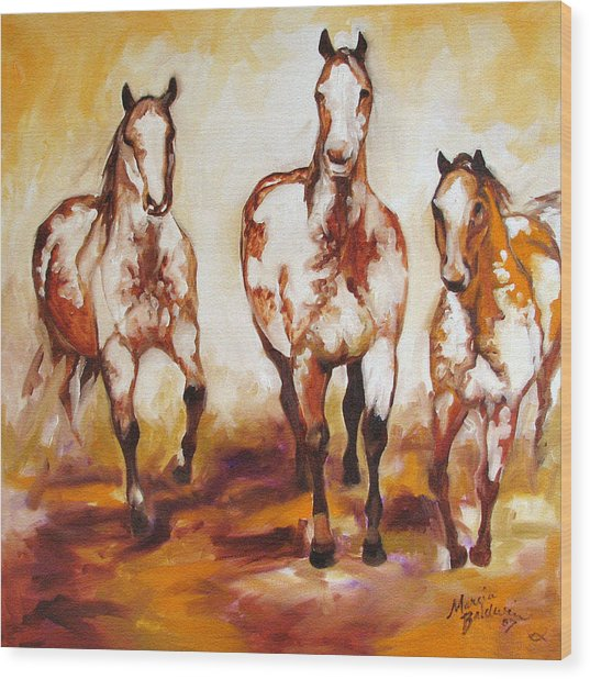 Three Pinto Indian Ponies Wood Print
