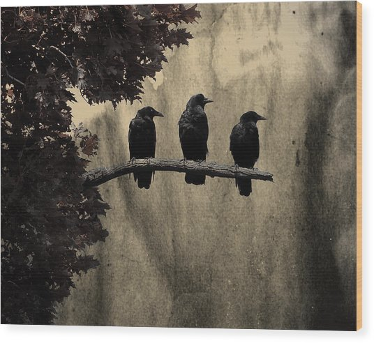 Three Ravens Branch Out Wood Print