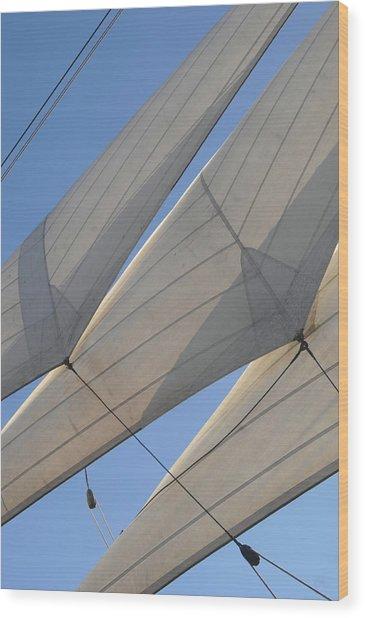 Three Sails Wood Print