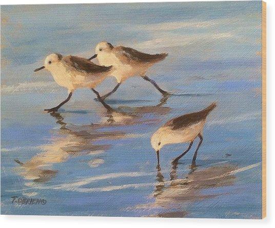 Three Sandpipers Wood Print by Tina Obrien