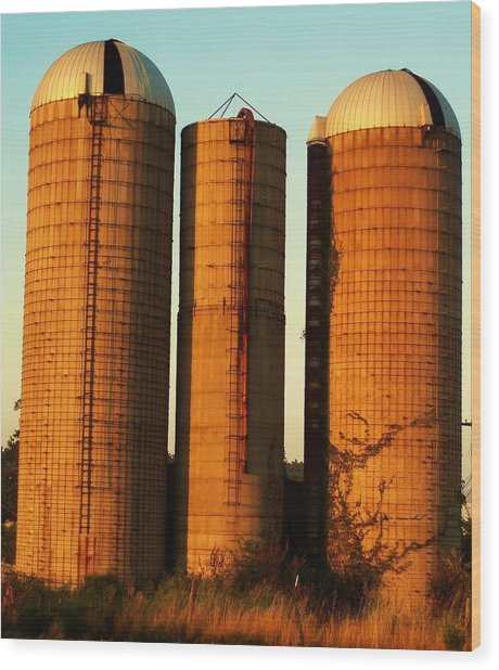 Three Silos At Daybreak Wood Print