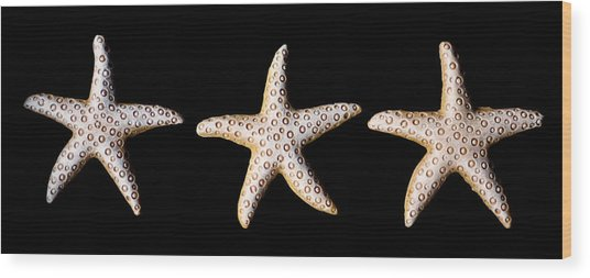 Three Stars - Sepia Wood Print