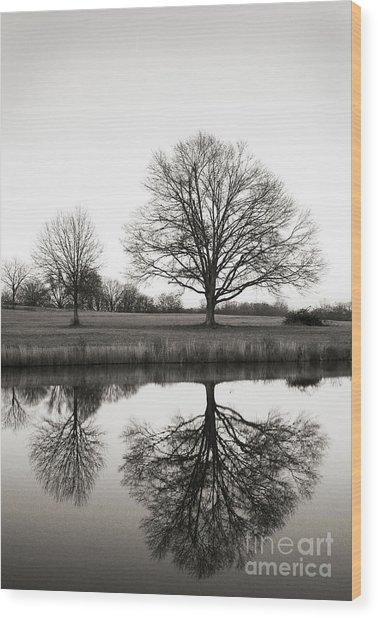 Three Trees Wood Print