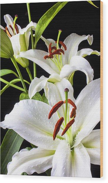 Three White Lilies Wood Print
