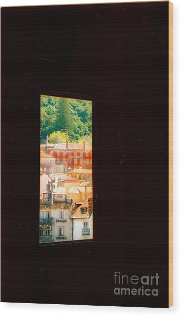 Through A Window Darkly Wood Print by Andrea Simon