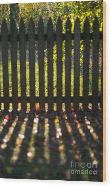 Through The Fence Wood Print by Hideaki Sakurai