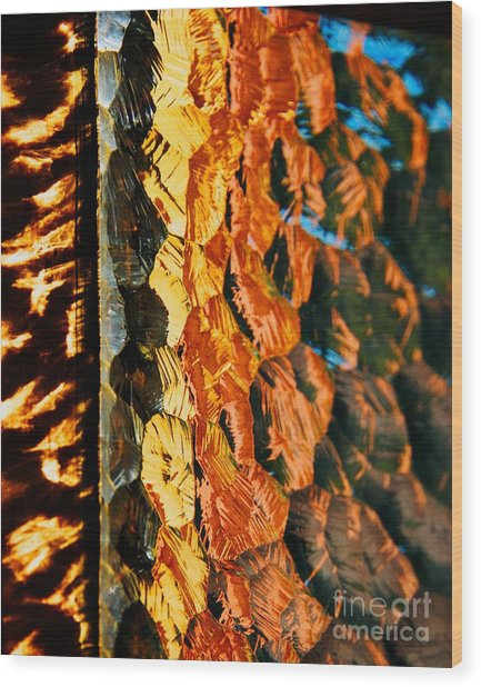 Through The Glass Wood Print by Hideaki Sakurai