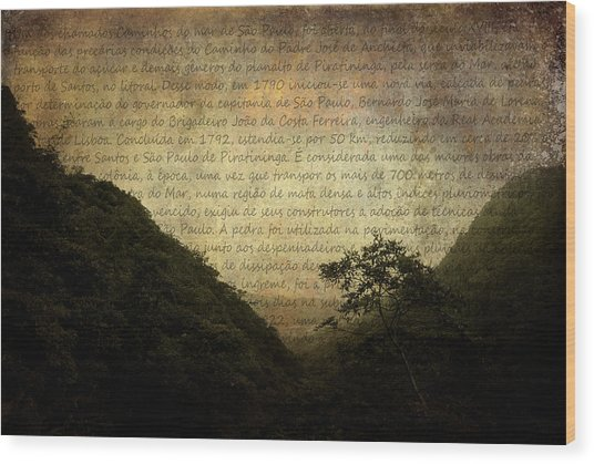 Through The Mountains Wood Print by Valmir Ribeiro