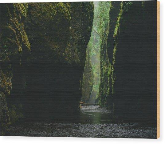 Through The River Wood Print